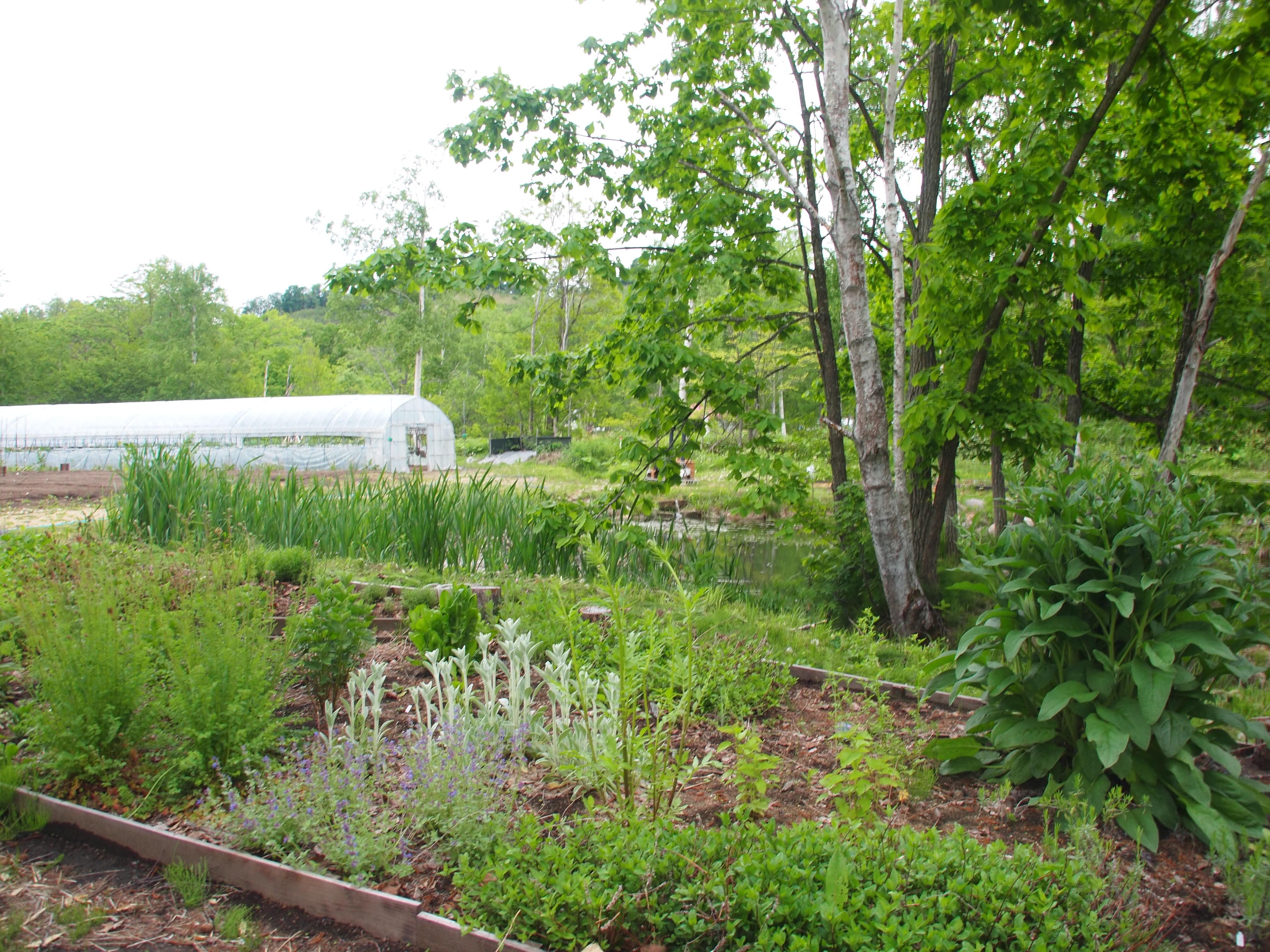 ガーデン調査に、いいね!農styleハーブガーデンへ♪