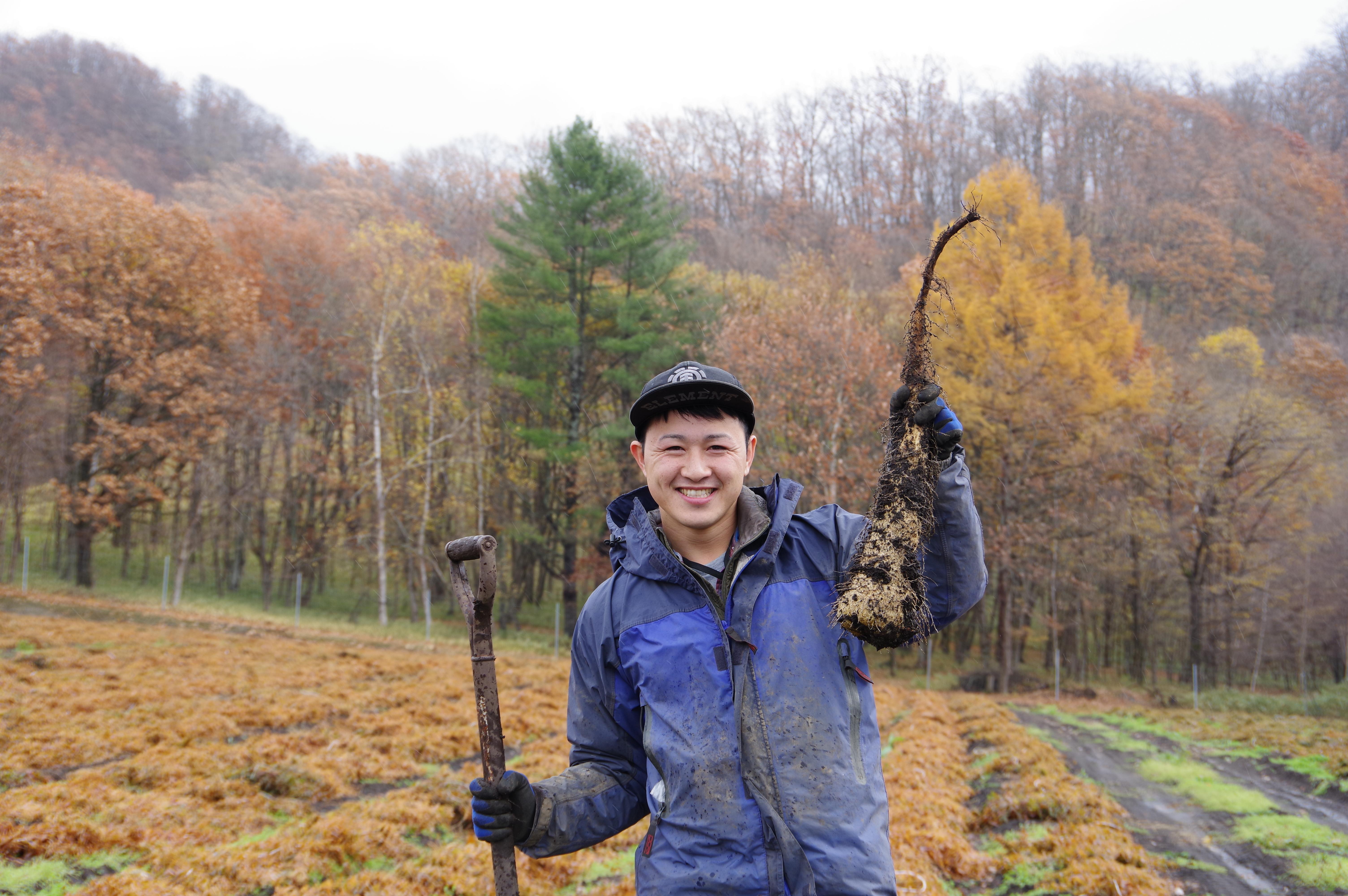 中澤農園さんの「だるま芋」を訪ねて@むかわ