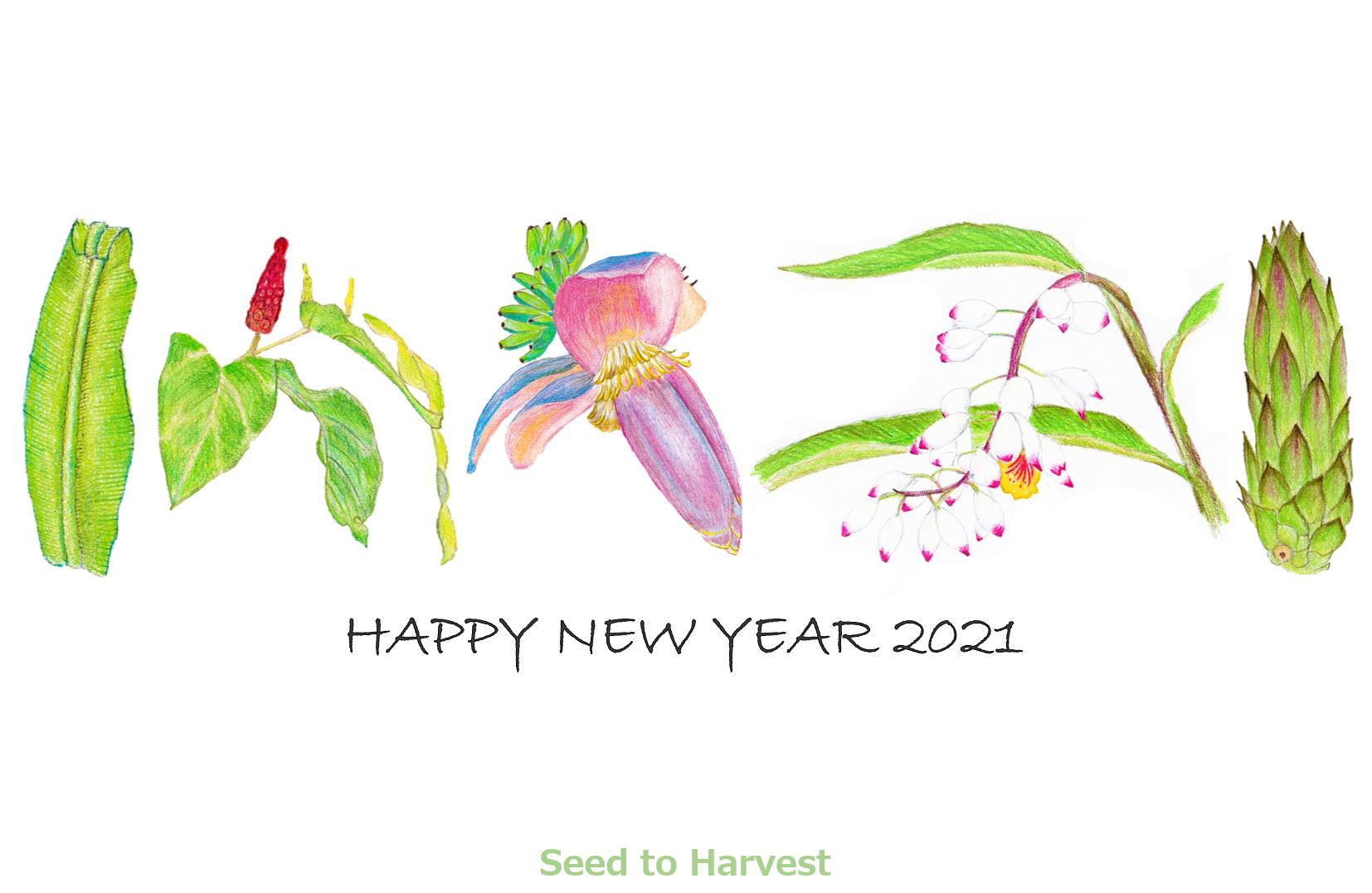 本年もよろしくお願いします!~2021年 野菜・果物の年賀状~