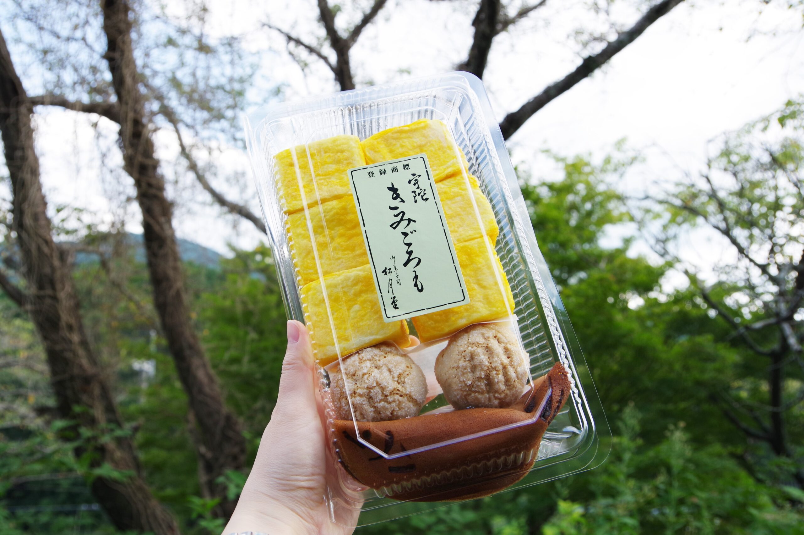「銘菓きみごろも本舗 松月堂」@奈良県宇陀市 ~スフレな和菓子~